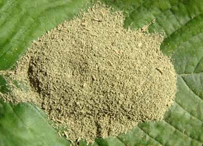 Is Kratom Legal in Tennessee in 2014?